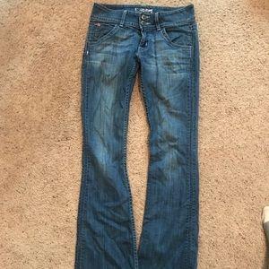 Hudson bootcut size 25